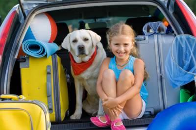 Summer Break Planning for Divorced Families